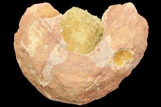 Buy Fluorescent Calcite Geode In Sandstone - Morocco  - #69898