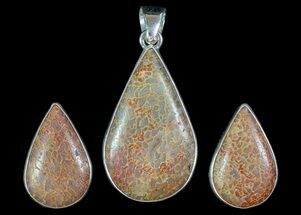Agatized Dinosaur Bone (Gembone) Earrings & Pendant Set For Sale, #69968