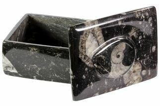 "4"" Fossil Orthoceras/Goniatite Box (Rectangle) - Stoneware For Sale, #70733"