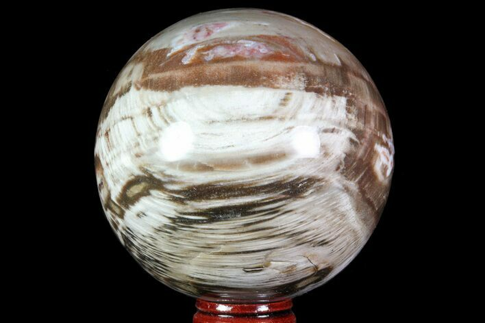 "3.4"" Colorful Petrified Wood Sphere - Madagascar"