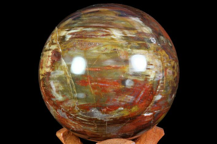 "3.9"" Colorful Petrified Wood Sphere - Madagascar"