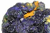 "8.3"" Azurite Crystal Cluster with Fibrous Malachite - Laos - #50779-3"