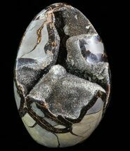 Septarian with barite - Fossils For Sale - #73137