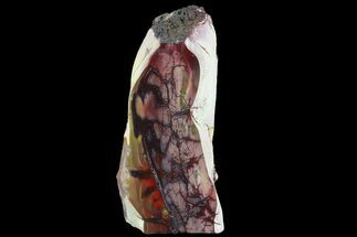 "8"" Freestanding Brilliant, Red/Purple, Polished Mookaite Jasper For Sale, #74087"