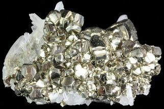 "Buy 2.6"" Gleaming Pyrite Crystal Cluster with Quartz - Peru - #72589"