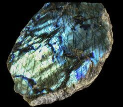 "Buy 7.1"" Tall, Single Side Polished Labradorite - Madagascar - #72571"