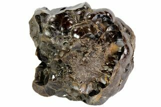 Hematite - Fossils For Sale - #73056
