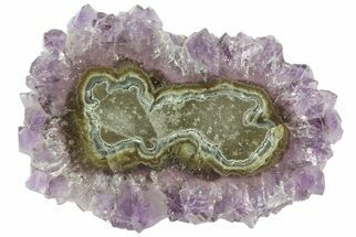 "2.3"" Amethyst Stalactite Slice - Uruguay For Sale, #76619"