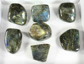 Labradorite - Fossils For Sale - #77649