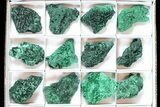 Wholesale Lot: Gorgeous Fibrous Malachite From Congo - 24 Pieces - #77804-1