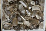"Wholesale Lot: 25 Lbs Smoky Quartz Crystals (2-4"") - Brazil - #77821-2"