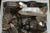 "Wholesale Lot: 23 Lbs Smoky Quartz Crystals (2-4"") - Brazil - #77828-1"