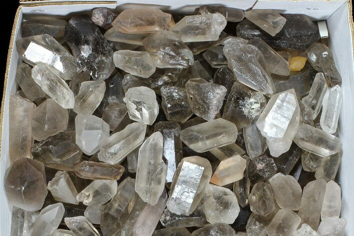 "Wholesale Lot: 26.5 Lbs Smoky Quartz Crystals (2-4"") - Brazil"