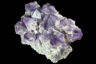 "Buy 18"" Natural Amethyst Cluster (82 lbs) - Massive Points - #78106"