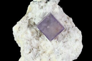 "Buy .8"" Purple Fluorite Cube On White Bladed Barite - Morocco - #78850"