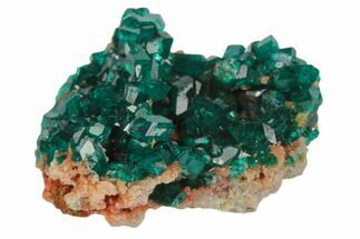 ".95"" Sparkly, Gemmy Dioptase Crystal Cluster - Namibia For Sale, #78701"