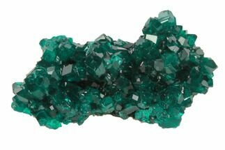"Buy 1"" Lustrous, Dark Green Dioptase Crystal Cluster - Namibia - #78703"