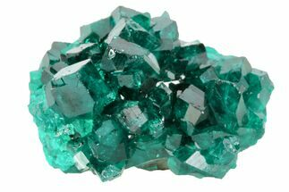".7"" Gemmy, Dark Green Dioptase Crystal Cluster - Namibia For Sale, #78710"