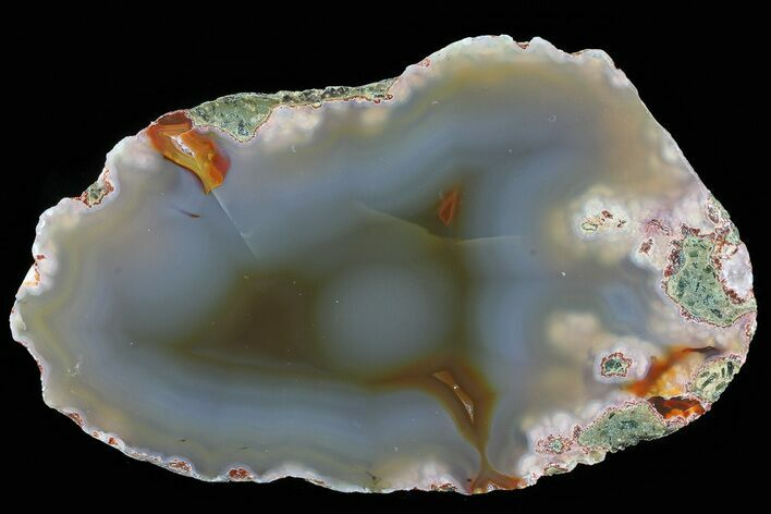 "4.3"" Beautiful Condor Agate From Argentina - Cut/Polished Face"