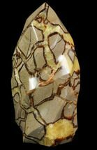 "Buy 9.3"" Polished Septarian Flame - #79552"