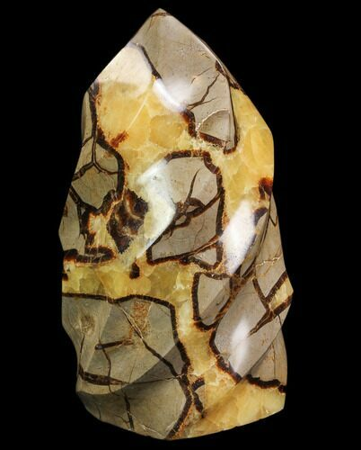 "8"" Polished Septarian Flame"