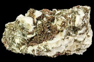 "Buy 3.3"" Pyrite On Calcite & Quartz - El Hammam Mine, Morocco - #80365"