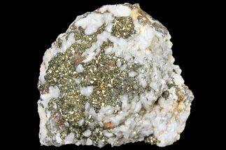 Pyrite & Calcite - Fossils For Sale - #80712