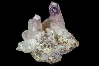 "1.6"" Amethyst Cluster - Las Vigas, Mexico For Sale, #80594"