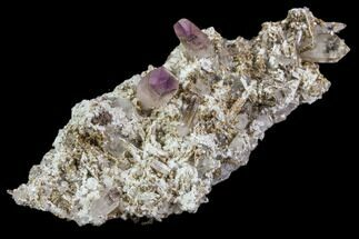 Quartz var. Amethyst - Fossils For Sale - #80610