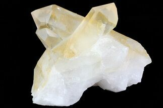 "Buy 3"" Quartz Crystal Cluster - Brazil - #81004"
