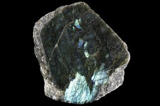 "6.2"" Tall, Single Side Polished Labradorite - Madagascar For Sale, #81389"