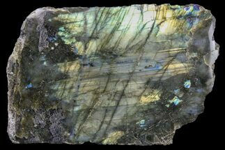 Labradorite - Fossils For Sale - #81396
