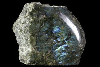 "Buy 6.4"" Wide, Single Side Polished Labradorite - Madagascar - #81400"