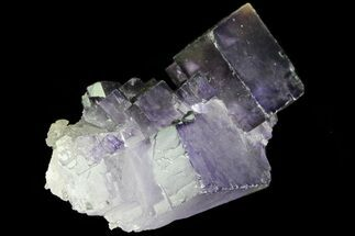 Fluorite - Fossils For Sale - #80346