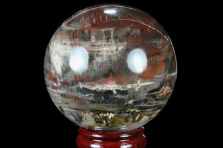 "3.8"" Colorful Petrified Wood Sphere - Madagascar For Sale, #81545"