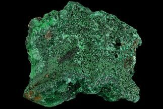 Malachite  - Fossils For Sale - #81750