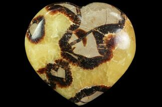 "Buy 3.2"" Polished Septarian Heart - #82015"