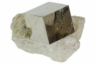 Pyrite - Fossils For Sale - #82086