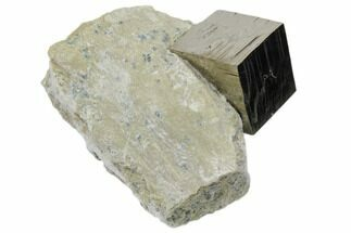 "Buy .9"" Natural Pyrite Cube In Rock From Spain - #82075"
