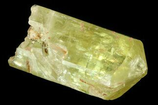 ".9"" Lustrous Yellow Apatite Crystal - Morocco For Sale, #82460"