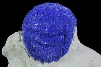 "Buy .4"" Brilliant Blue Azurite Sun - Australia - #82708"