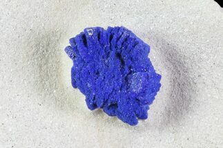 ".3"" Brilliant Blue Azurite Sun - Australia For Sale, #82670"