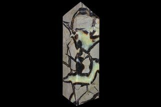 "Buy 8.2"" Polished Septarian Obelisk - Madagascar - #83299"
