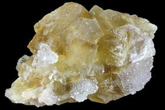 "Buy 1.8"" Lustrous Yellow Cubic Fluorite/Quartz Crystal Cluster - Morocco - #84289"
