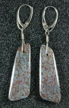 Powder Blue, Agatized Dinosaur Bone (Gembone) Earrings  For Sale, #84748