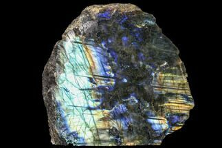 "Buy 5.7"" Wide, Single Side Polished Labradorite - Madagascar - #84865"