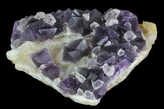 Fluorite & Calcite - Fossils For Sale - #84768