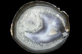 "6.5"" Polished Brazilian Agate Slice For Sale, #85100"