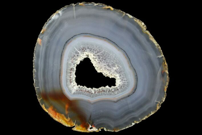 "6.1"" Polished Brazilian Agate Slice"