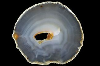 "Buy 7.3"" Polished Brazilian Agate Slice - #85189"